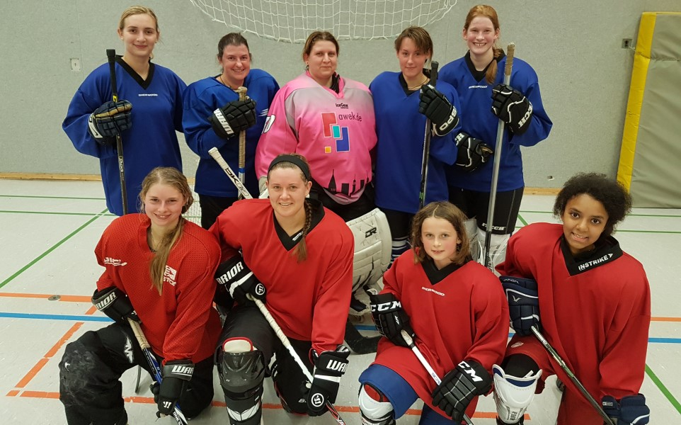 Lady's Hockey